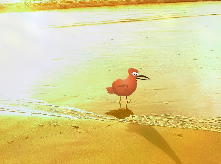 Birdy on the Beach